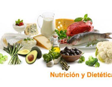 Alimentos sanos para nutrirse