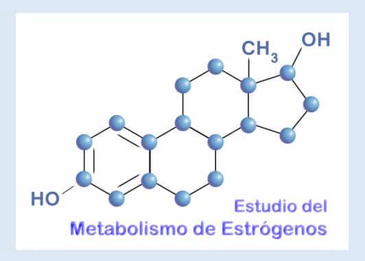Estudio de estrógenos